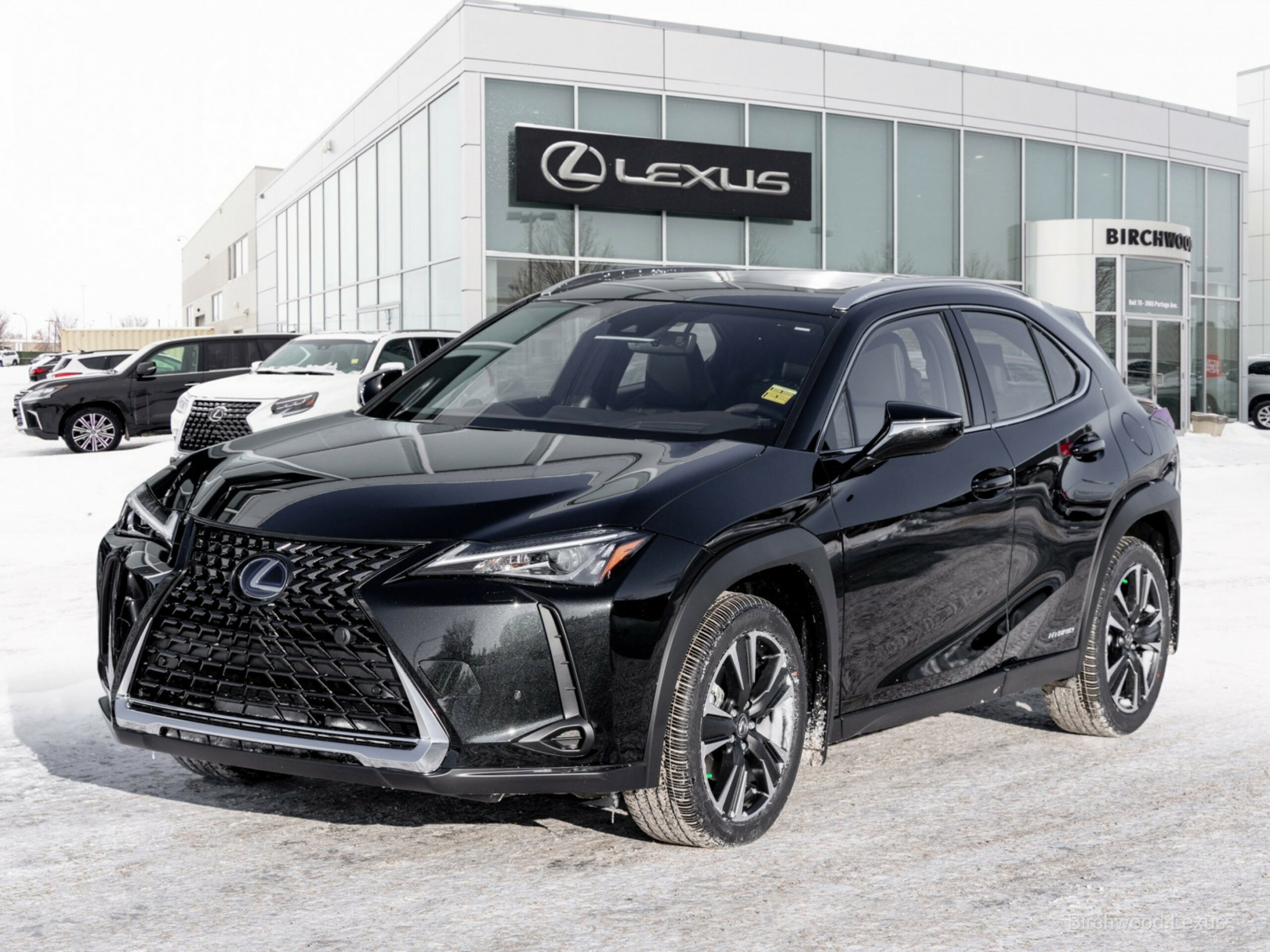 8 Lexus UX 8h Luxury, stock no. LX8 - Birchwood Lexus