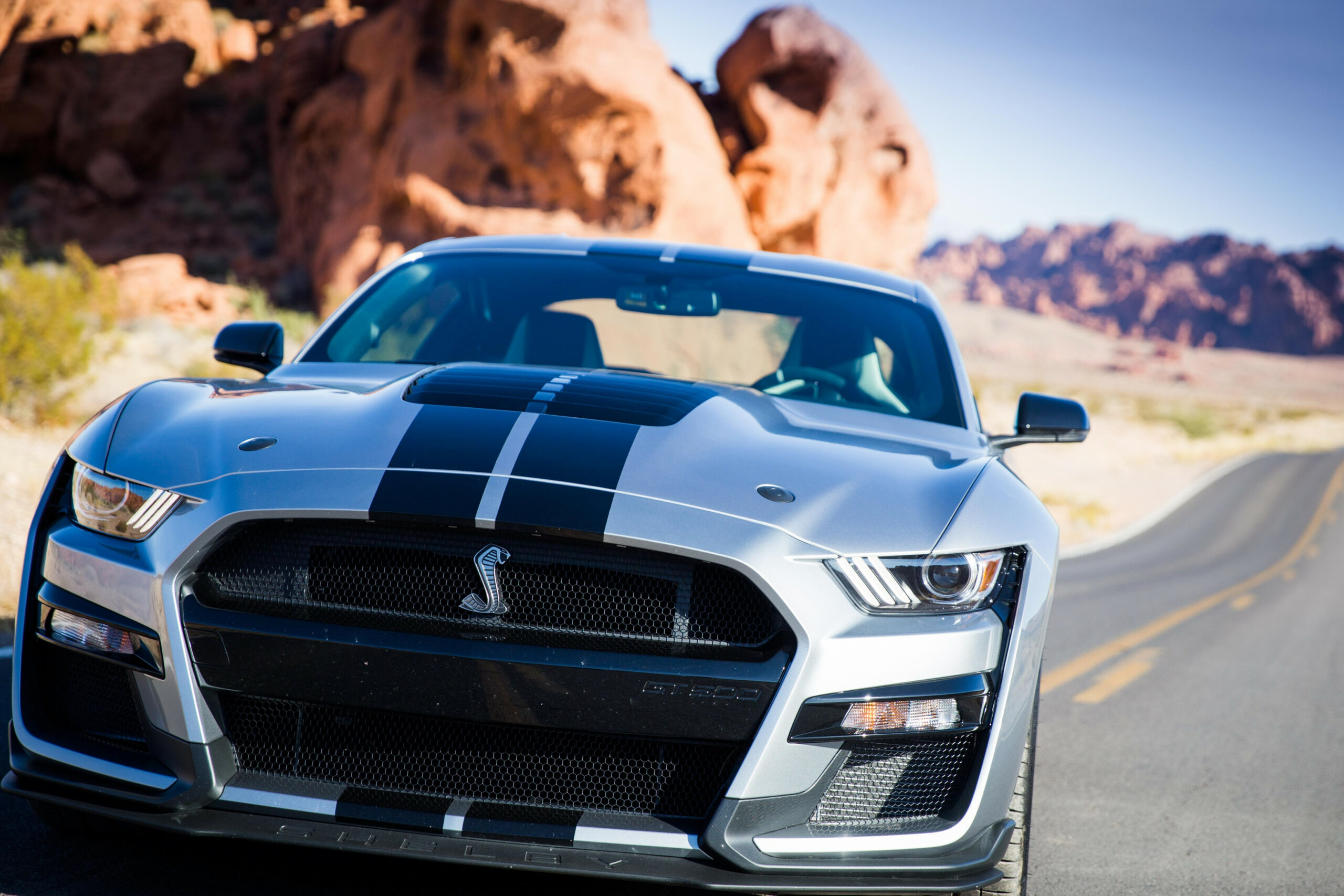 The 10 Ford Shelby Mustang is a savage, daily-driver muscle car ..