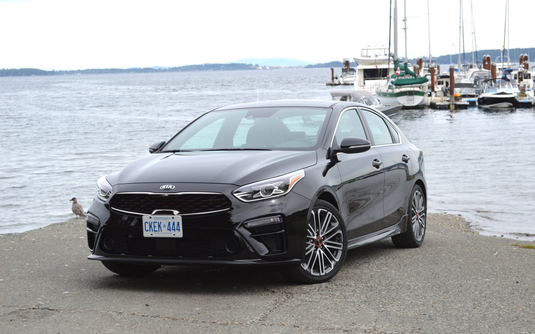 10 Kia Forte GT: The Civic Si Can Rest Easy - The Car Guide - 2020 kia manual transmission