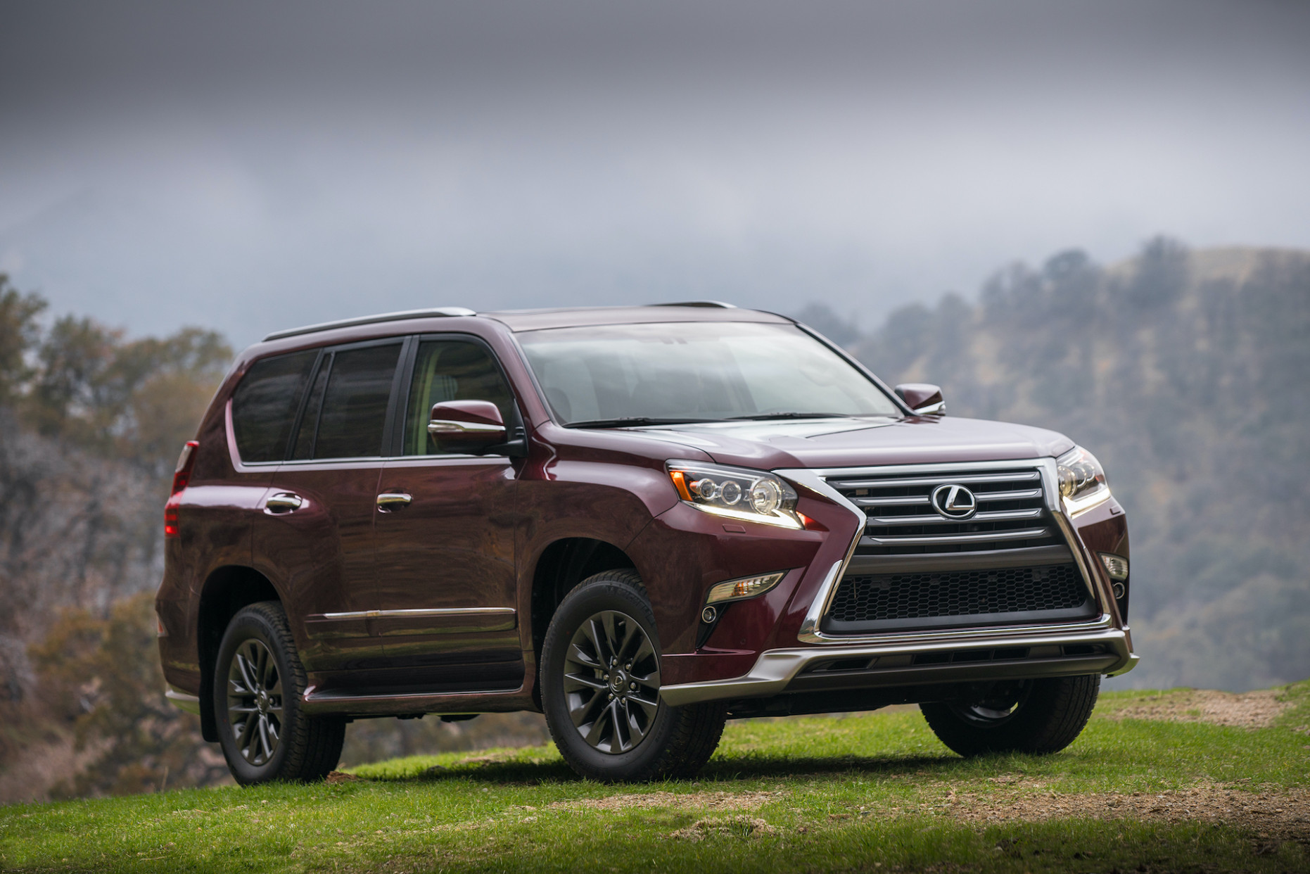 7 Lexus GX Review, Ratings, Specs, Prices, and Photos - The Car ..