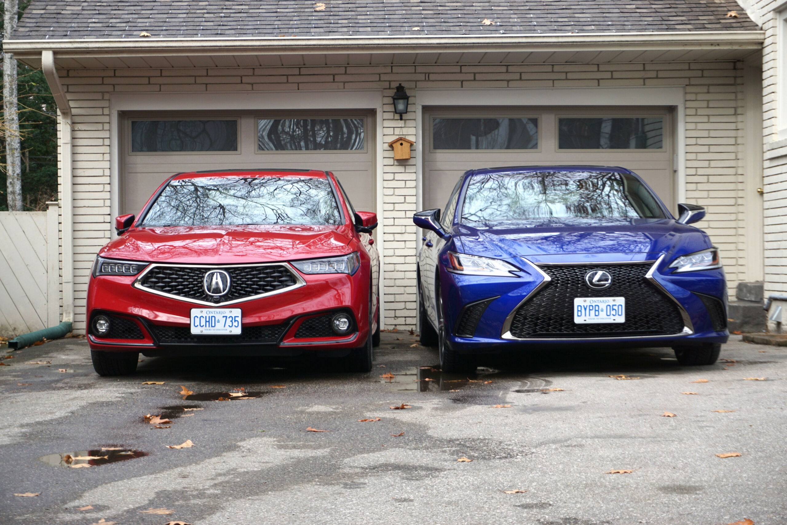 Faceoff: 6 Acura TLX vs. 6 Lexus ES6 - The Globe and Mail