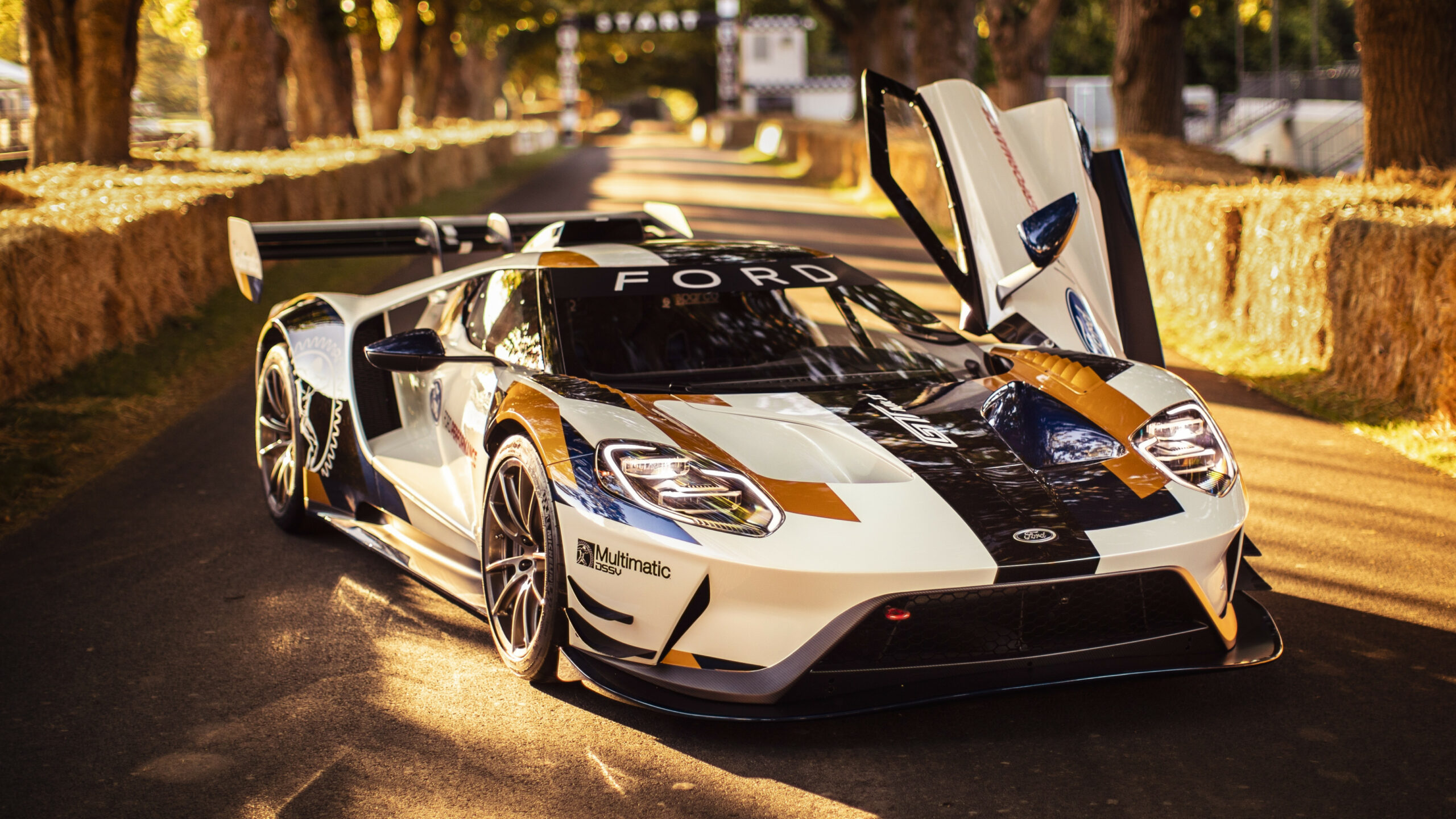 6 Ford GT Mk II Quirks And Facts | Top Speed - 2020 ford gt top speed