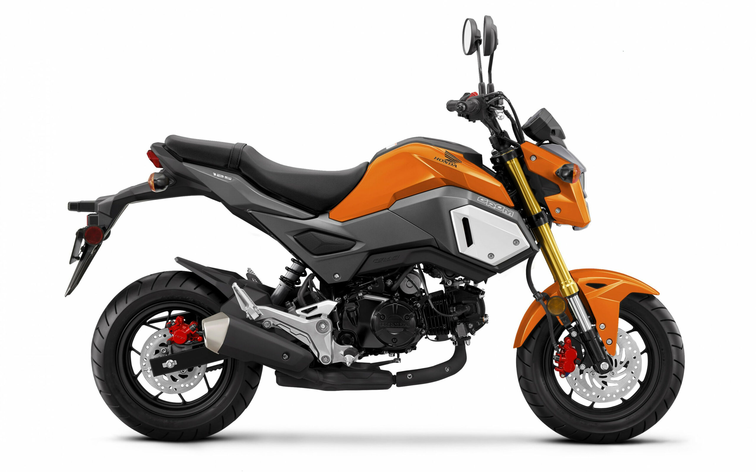 7 Honda Grom | Cycle World