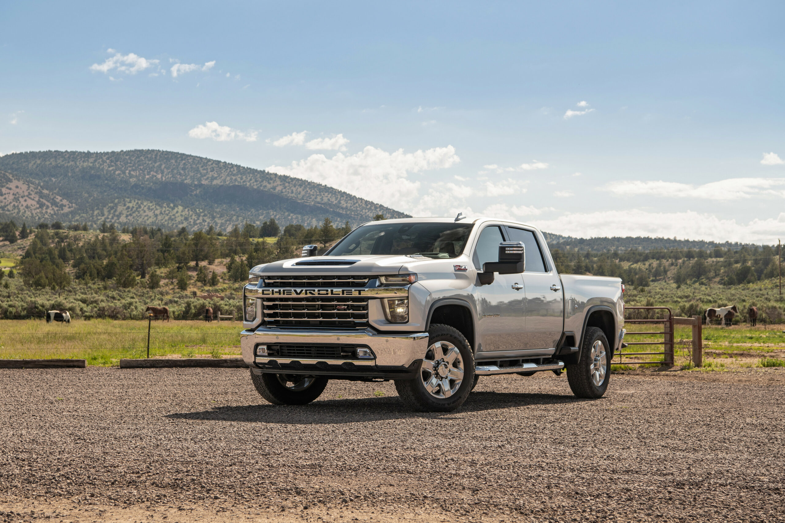 Chevrolet Pressroom - Middle East - Images - 2020 chevrolet z71